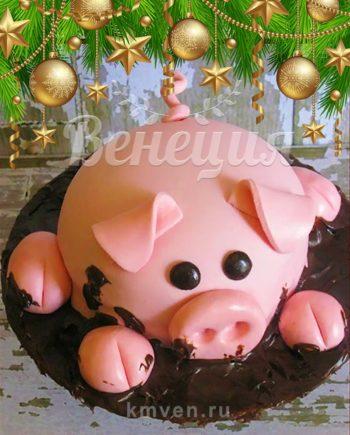 Свинья в грязи торт Новогодний в Твери поросята хрюшки на заказ Венеция